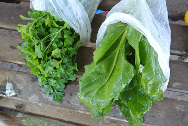 Parsley and spinach