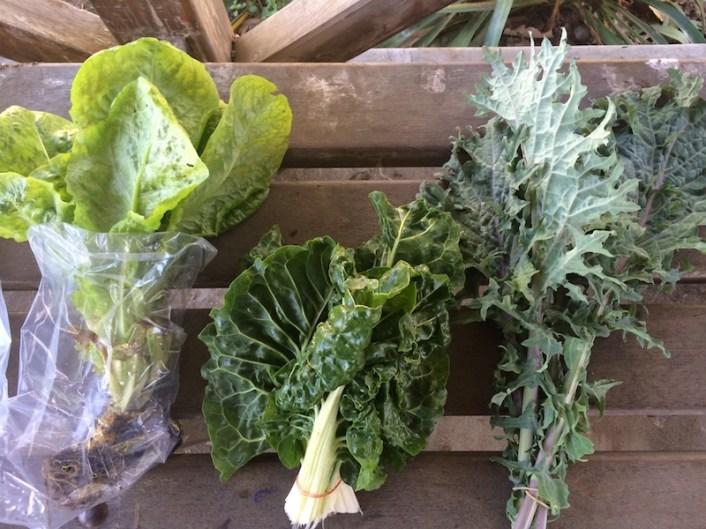 Green veges