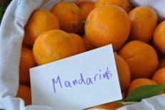 mandarins3