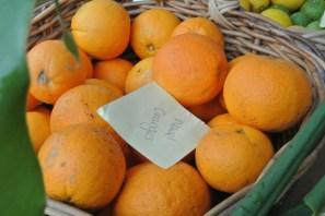 navel_oranges