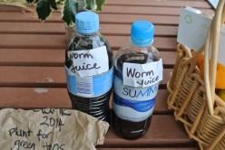 worm_juice