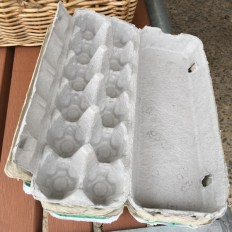 egg_cartons