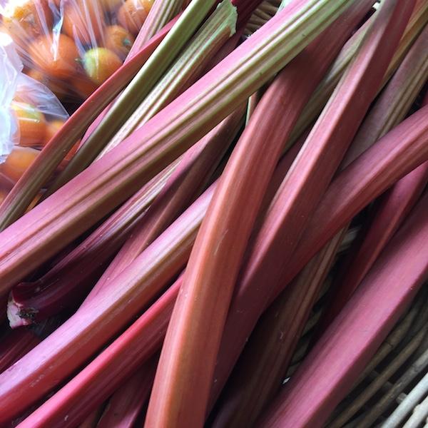 rhubarb3