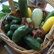 cucumber_zucchini_shallots