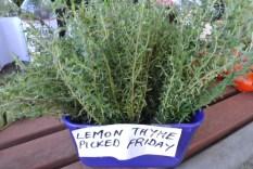 lemon_thyme