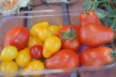 tomato_medley