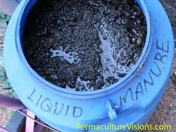 Liquid Manure PermacultureVisions