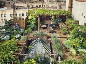zielony_dach (3)