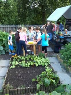 Wspólny Ogród 6