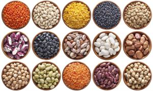 large_Pulses-cropped
