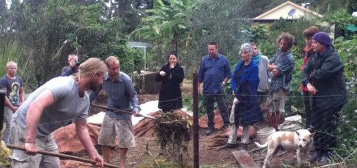 End of the 12 day Permaculture Design Certificate course, during which an 18 day compost was started.