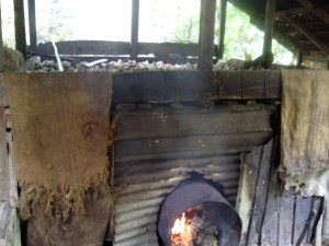 Drying coconut flesh above a wood fire to make copra