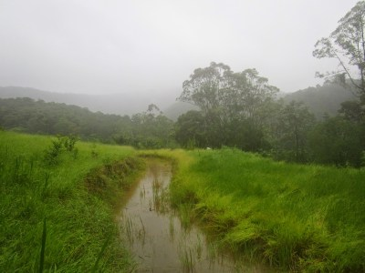 130m long full swale at the Permaculture Research Institute Sunshine Coast