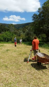 Surveying the land for ginger crops at Maungaraeeda, home of the PRI Sunshine Coast