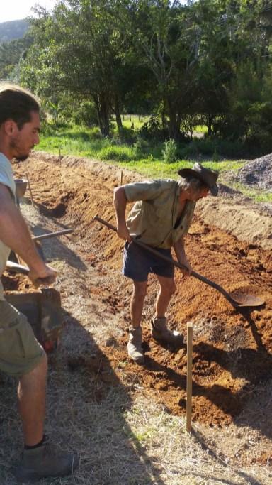 Planting ginger at the PRI Sunshine Coast
