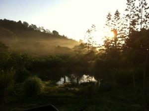 Sunrise at Maungaraeeda, our permaculture farm on the Sunshine Coast