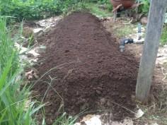 Tom Kendalls composted garden bed at Maungaraeeda.
