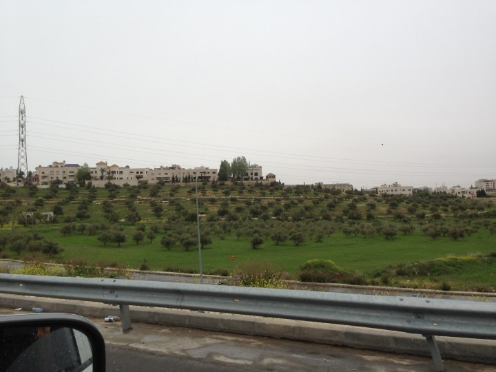 Tom Kendall views the green countryside near Amman in Jordan.
