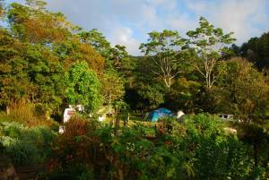 Camping, caravan or shared accommodation for your Permaculture Design Certificate course