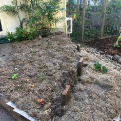 Retaining wall built and beds prepared and planted out, urban location