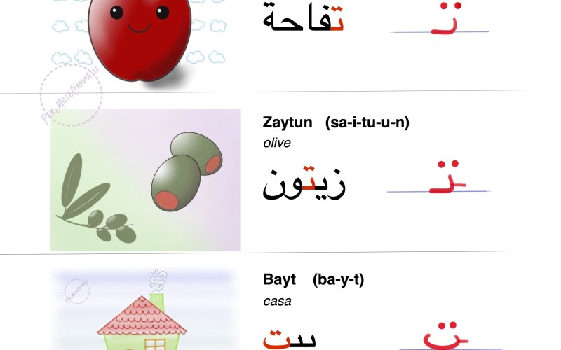 Lettere Taa e Thaa  – Arabo per bambini