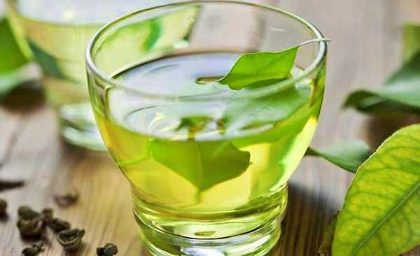 Chá-verde pode ajudar você a perder peso com facilidade Pernambuco Notícias