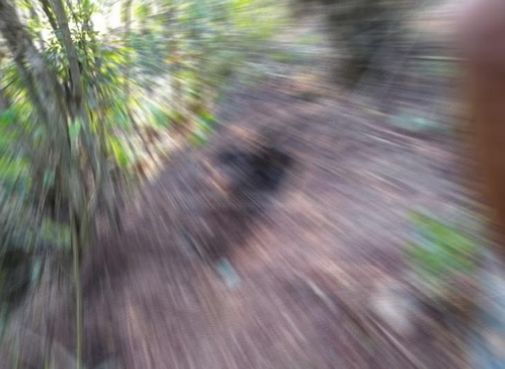 Corpo encontrado enterrado em terreno baldio de Catende