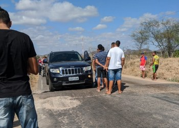 PM incinera plantação de maconha em Flores