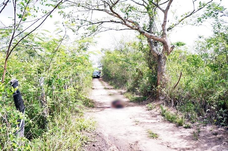 Caruaru: mulher executada com tiros no Sítio Brejo Velho