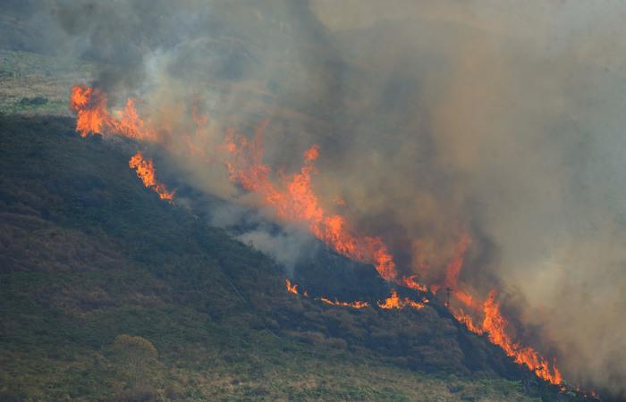 Amazônia registra aumento de queimadas no mês de julho