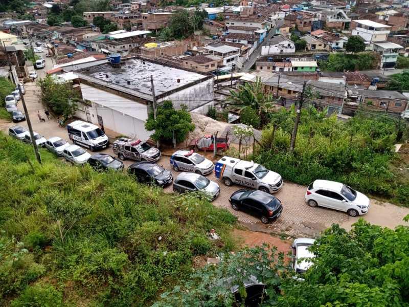 PM apreende 11 aves durante operação em Jaboatão dos Guararapes