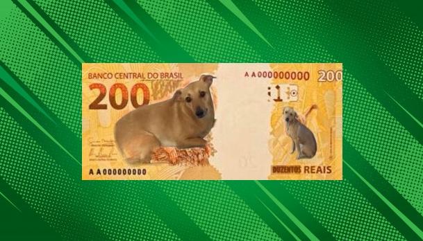 Petição quer cachorro vira-lata na nota de R$ 200 reais que será lançada pelo BC