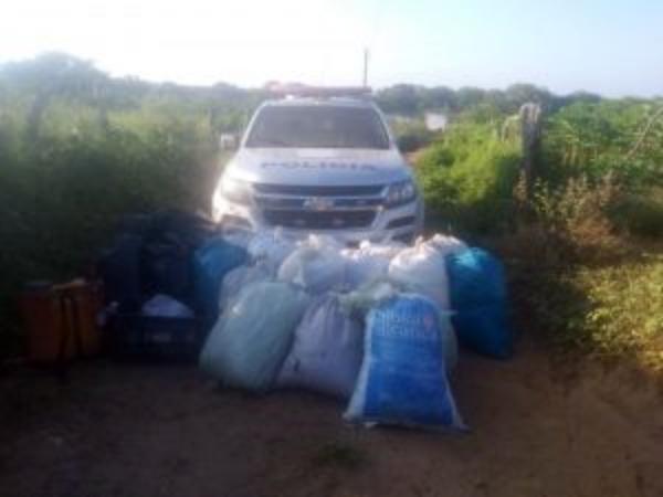 Polícia Militar apreende 147 quilos de maconha