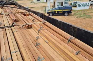 PRF finaliza Operação Caapora com grandes apreensões de madeira em Petrolina
