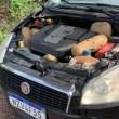 PM apreende cerca de 10 km de maconha escondidos em carro