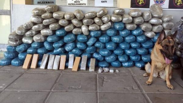 Gravatá: Polícia apreende mais de 130kg de maconha e R$ 6 mil reais