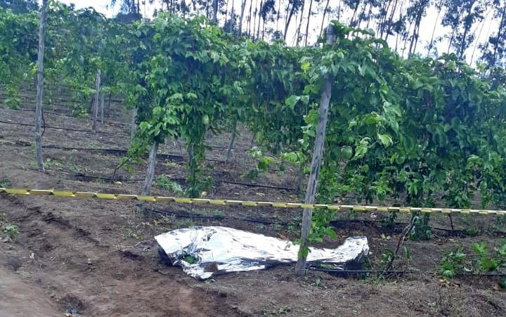 Agricultor assassinado quando colhia maracujás na zona rural de Bonito (PE)