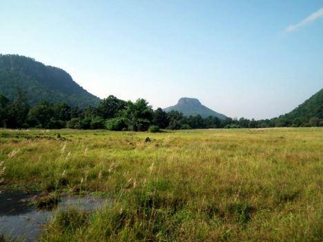 Park Narodowy Bandhavgarh w Indiach to nie tylko dżungla. (Fot. Rafał Sigiel)