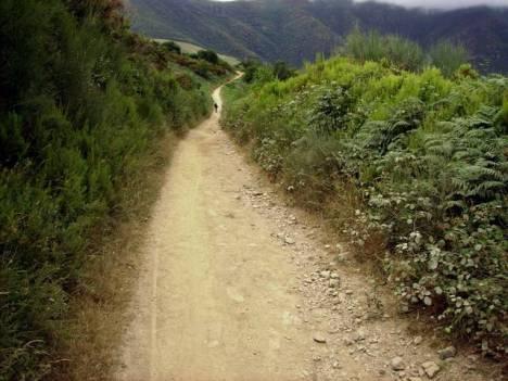 Szlak św. Jakuba - Camino de Santiago