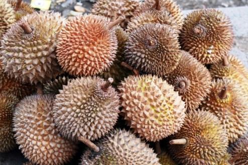 Durian - intrygujący owoc z Sumatry. (Fot. Natlia Mileszyk)