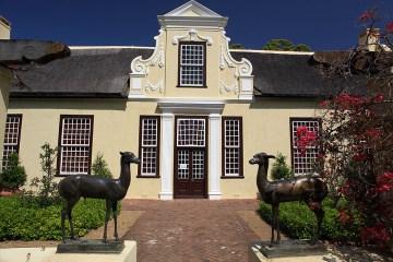 Winnica w miasteczku Vergelegen, Republika Południowej Afryki.