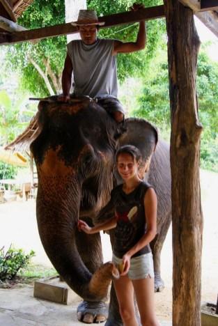 Tajlandia – ośrodek dla słoni. Tutaj spokojny dom znalazły olbrzymy uratowane przed wyzyskiwaczami, którzy trzymali je w okrutnych warunkach i zarabiali na nieświadomych turystach. (fot. Natalia Rożniewska)