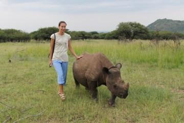 Spacer z nosorożcem