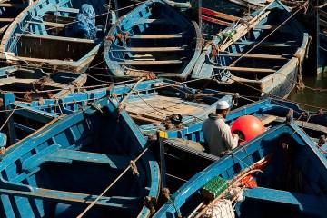 Niebieskie łodzie w marokańskim porcie