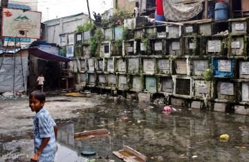 Metro Manila na Filipinach, cmentarz Novotas