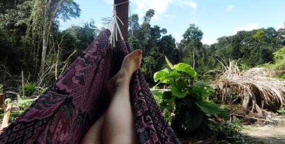 Hamak w amazońskiej dżungli
