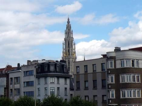 Katedra w Antwerpii