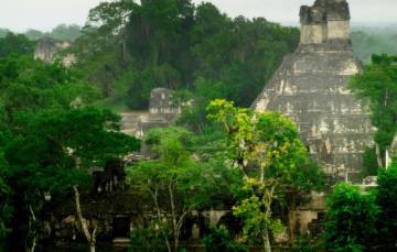 Zagubione w dżungli miasta Majów