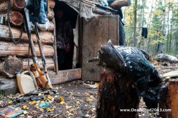 Chata zagubiona gdzies na Syberii - podróż przez Rosję, foto