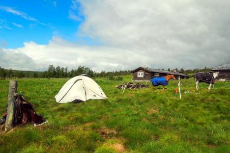 Konno przez Norwegię - biwak